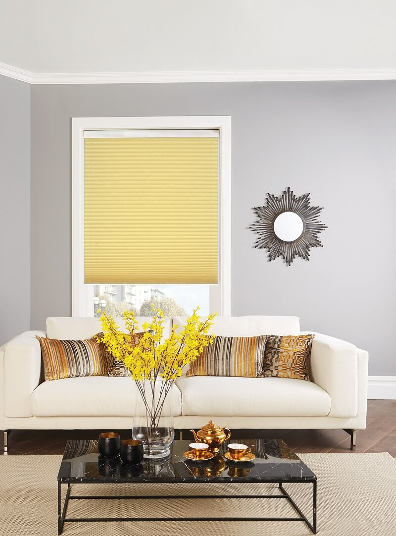 Pleated Blind Range